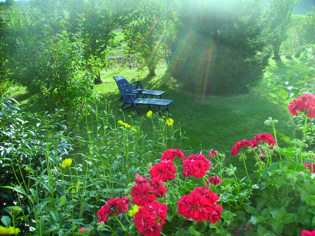 Garten Bild 10