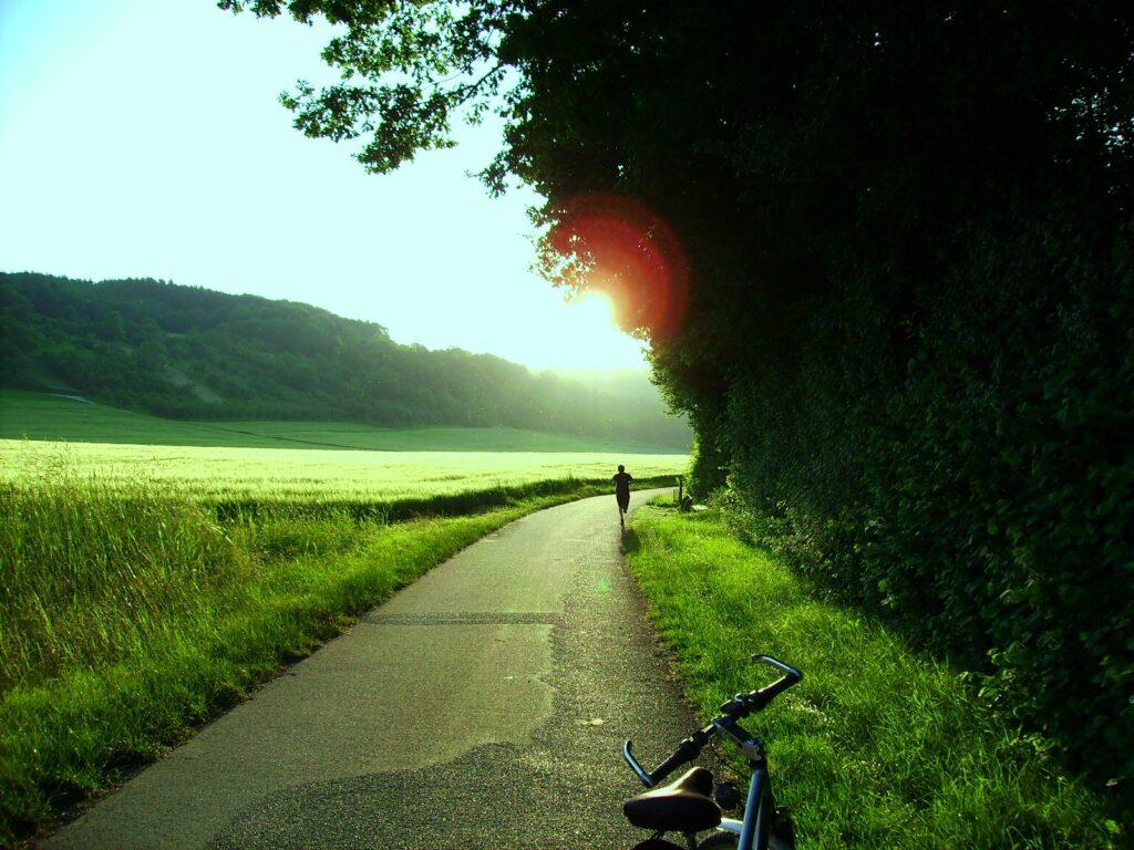 Radweg Bild 1