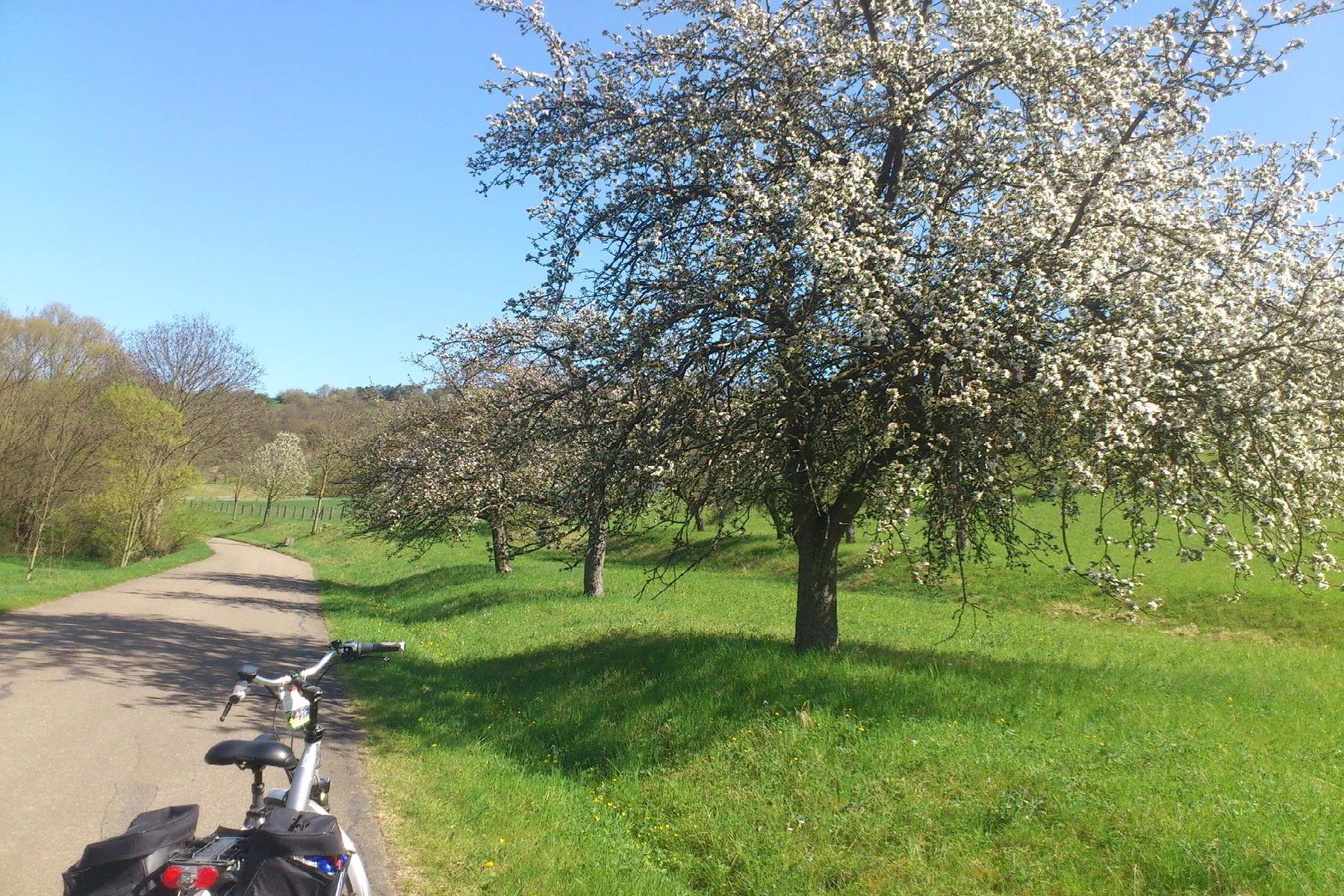 Radweg Liebliches Taubertal